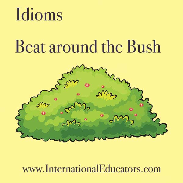 beat around the bush idiom idioms international